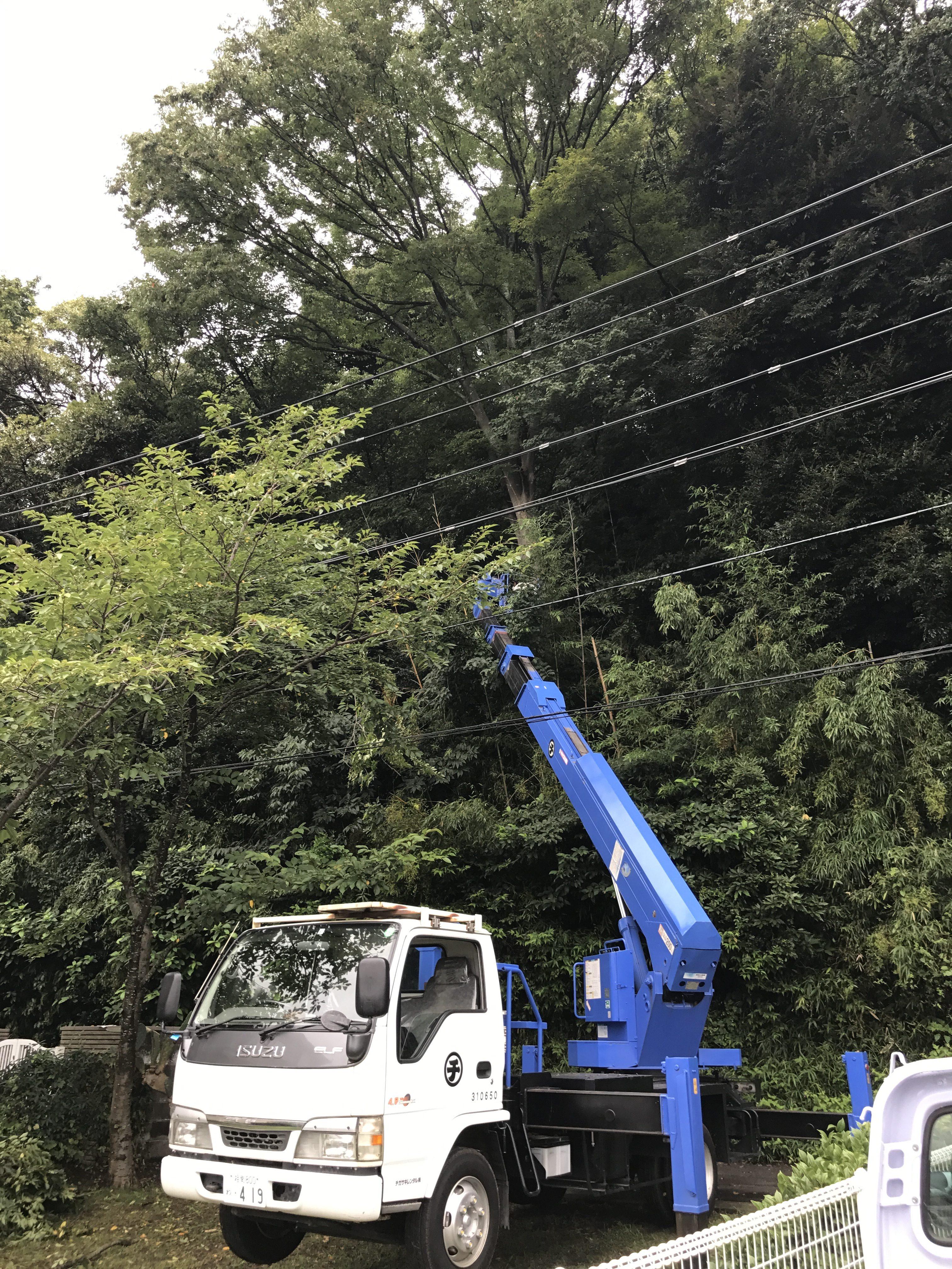 赤羽根山伐採工事